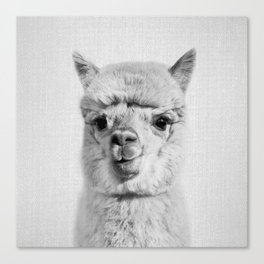 Alpaca - Black & White Canvas Print