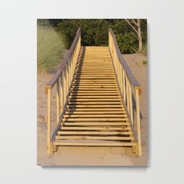 Save the Dunes - Use the Steps Metal Print