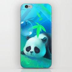 Bamboo Panda iPhone & iPod Skin