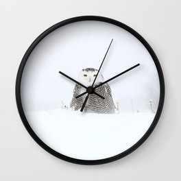 White on white Wall Clock