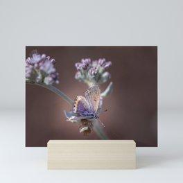 Butterfly II Mini Art Print