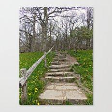 Stairway of Dreams Canvas Print