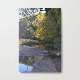 Where Canoes and Raccoons Go Series, No. 3 Metal Print