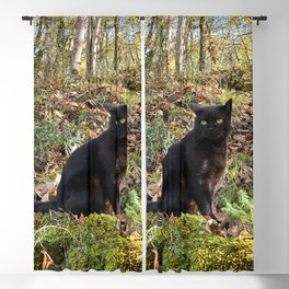 black cat in the forest Blackout Curtain