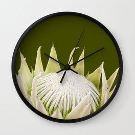 White King Protea Wall Clock