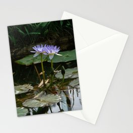 Purple Lilypad Flowers are Blooming in Spring Stationery Cards
