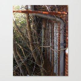 Overgrown Canvas Print