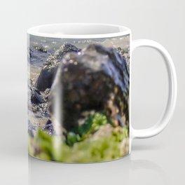 Rocks and algae Coffee Mug