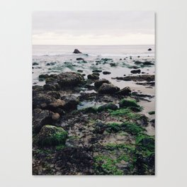 El Pescador Beach, California Canvas Print