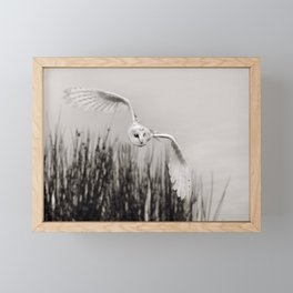 """Night Owl"" Framed Mini Art Print"