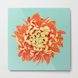 Chrysanthemum (Part of a Triptych) Metal Print