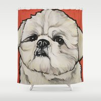shih tzu Shower Curtains featuring Waffles the Shih Tzu by Cheney Beshara
