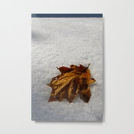 crisp morning Metal Print