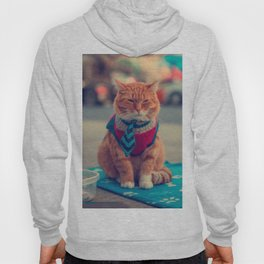 Tie Beige Cat Sitting Begging Hoody