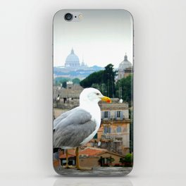 Gull's-Eye Rome iPhone Skin