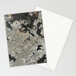 Below Our Feet Stationery Cards