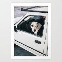 Dog of LA Art Print