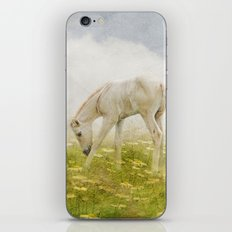 Greener Pastures iPhone & iPod Skin