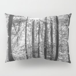 Beech Wood Sunrise Pillow Sham