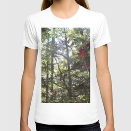 Changing Colors T-shirt