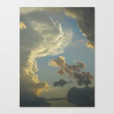 Beauty In The Sky Canvas Print