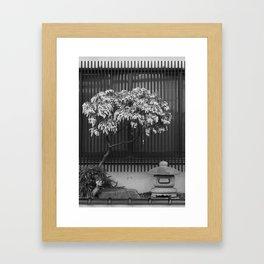 Japanese Tree and Stone Lantern Framed Art Print
