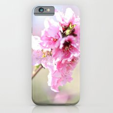 Apple Blossom iPhone 6s Slim Case