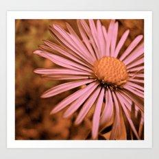 Pink as a Petal Art Print