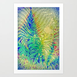 Fern and Fireweed 01 Art Print