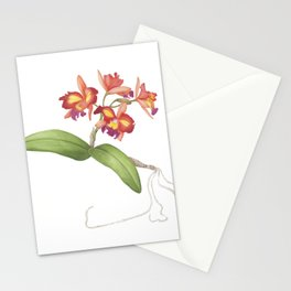 Red Orange Orchid Stationery Cards