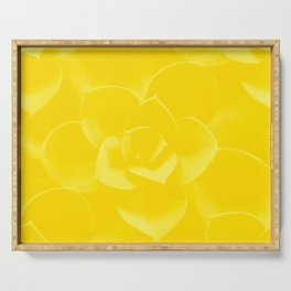Succulent Plant Yellow Mellow Color #decor #society6 #buyart Serving Tray