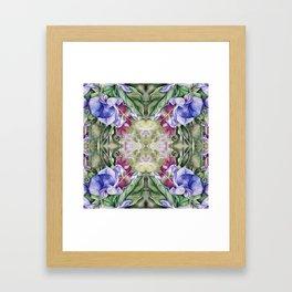 Lathyrus 5 Framed Art Print