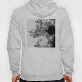 males mandelbrot abstract Hoody