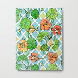 Climbing Nasturtiums on Blue and White Metal Print