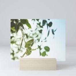 Nature photography green leaf I Mini Art Print