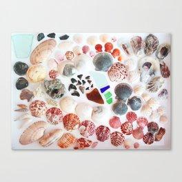 Shark Teeth and Sea Glass Canvas Print