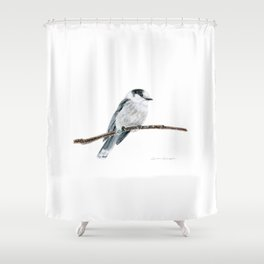 Gray Jay by Teresa Thompson Shower Curtain