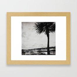 Palm Tree on the Marsh Framed Art Print