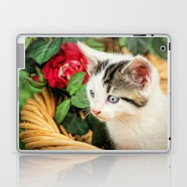 Day Dreaming Laptop & iPad Skin