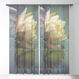 Water lily Sheer Curtain