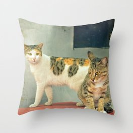 Two Cats Throw Pillow