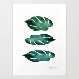 no.534. Monstera Leaves. Botanical art Art Print