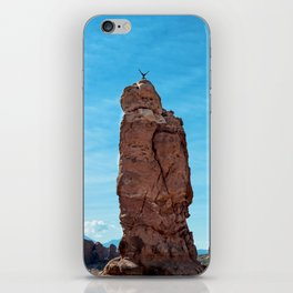 Arches Handstand iPhone Skin