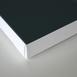 Flip It Canvas Print