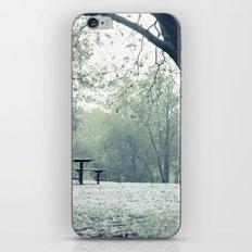 Sunrise Picnic iPhone & iPod Skin