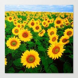 Sunflower art decoration ideas best design Canvas Print