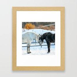 Percheron 6 Framed Art Print