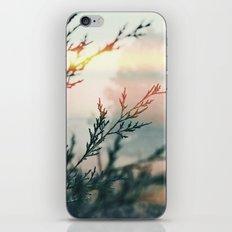 7 a.m. iPhone & iPod Skin