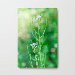 Wildlife White Flowers Metal Print