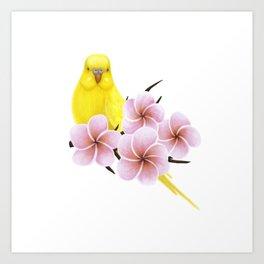 Yellow Budgerigar Art Print